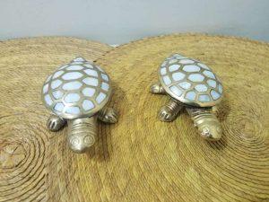 Tortugas de bronce solido en concha nacar
